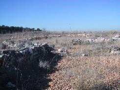 imagen villa romana 1